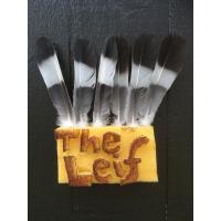 Album The Leif