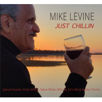 Album Just Chillin by Mike Levine