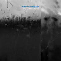 Matthew Shipp Trio—The Unidentifiable