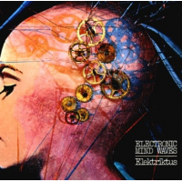 Album ELEKTRIKTUS by Andrea Centazzo