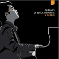 "Read ""88 Tones of Black and White"" reviewed by Karl Ackermann"