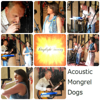 Acoustic Mongrel Dogs