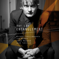 Album Entanglement by Ant Law