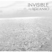 Invisible by Aguanko