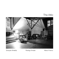 Rodrigo Amado: The Attic
