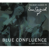 Blue Confluence by Ingrid James