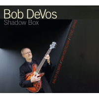 "Read ""Bob DeVos: Shadow Box"" reviewed by David A. Orthmann"