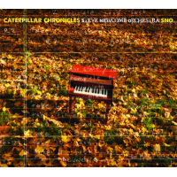 sTEVE nEWCOMB oRCHESTRA: Caterpillar Chronicles