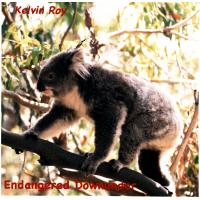 Endangered Downunder