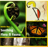Soothing Flora & Fauna