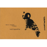"Read ""Calligrafie"" reviewed by Alberto Bazzurro"