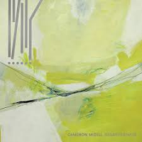 Cameron Mizell: Negative Spaces
