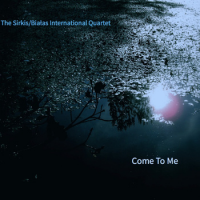 The Sirkis/Bialas International Quartet: Come To Me