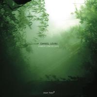 Album Inner Landscape by Daniel Levin