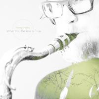 Album What You Believe Is True by Peter Vircks