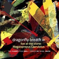 Dragonfly Breath III: Live at the Stone: Megaloprepus Caerulatus