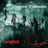 Steve Messick: Endemic Ensemble: Tangled