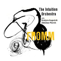Album The Intuition Orchestra -