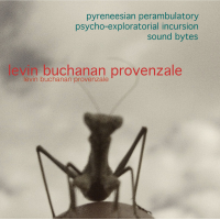 Pyreneesian Perambulatory  Psycho-Exploratorial Incursion Sound Bytes