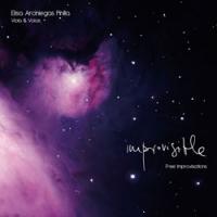 Album Improvisible by Elisa Arciniegas-Pinilla