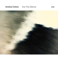 Into the Silence by Avishai Cohen