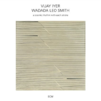 2016 top 50 most recommended CD reviews: A Cosmic Rhythm With Each Stroke by Vijay Iyer & Wadada Leo Smith
