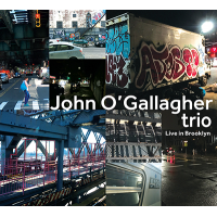 John O'Gallagher Trio: Live In Brooklyn