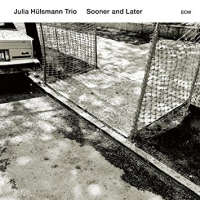 "Read ""Trios – Free Nelson Mandoomjazz, Organic Trio, Ben Rosenblum, Peter Erskine; Julia Hulsmann"" reviewed by C. Michael Bailey"
