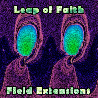 Leap of Faith - Field Extensions