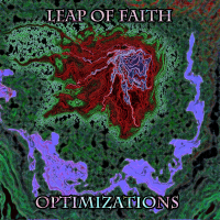 Leap of Faith - Optimizations