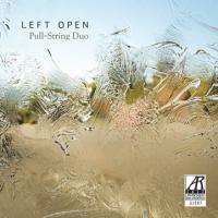 David Dvorin: Left Open