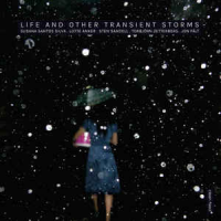 "Read ""Life and Other Transient Storms"""