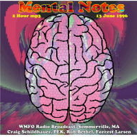 Mental Notes WMFO Broadcast ‐ Bottom Feeder + Strings