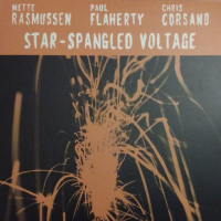"Read ""Star-Spangled Voltage"" reviewed by Mark Corroto"