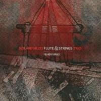 Szilard Mezei Flute & Strings Trio: Fehér Virág