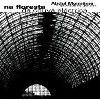 Na Floresta da Chuva Eléctrica / solo improvisations  by Abdul Moimême