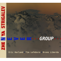 Zhenya Strigalev: Never Group