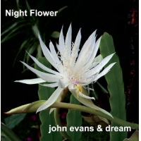 Album Night Flower by John Evans and Dream