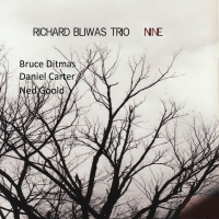 Album Nine by Richard Bliwas