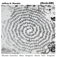 Jeffrey h. Shurdut (Orch-OR) by Jeffrey Hayden Shurdut