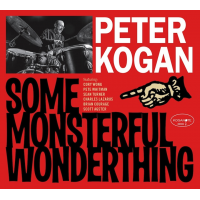 Album SOME MONSTERFUL WONDERTHING by Peter Kogan