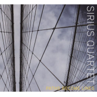 """Read """"Paths Become Lines"""" reviewed by Alberto Bazzurro"""