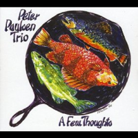 Album A Few Thoughts by Peter Paulsen