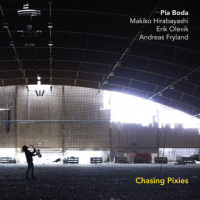"Read ""Chasing Pixies"" reviewed by Eyal Hareuveni"