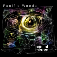 Album Pool of Mirrors by Harrison Goldberg