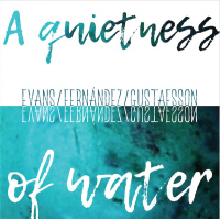 A Quietness of Water by Peter Evans