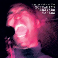 """Just for Now - Live!!"" by Screaming Headless Torsos"