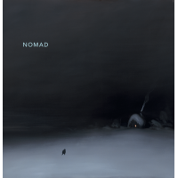 "Read ""Nomad"" reviewed by Nick Davies"