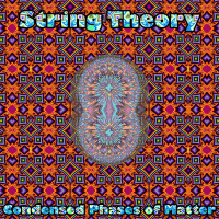 String Theory - Condensed Phases of Matter