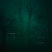 Album David Sylvian: There's a Light That Enters Houses With No Other House... by David Sylvian